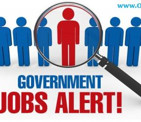 Short Essay on How to Get Government Job